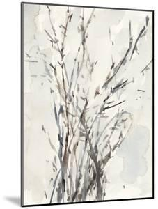 Watercolor Branches I by Samuel Dixon