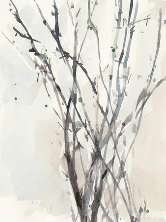 Watercolor Branches II
