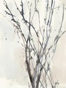 Watercolor Branches II by Samuel Dixon