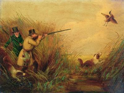 Duck Shooting Amongst Reeds