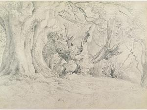 Ancient Trees, Lullingstone Park, 1828 (Graphite on Paper) by Samuel Palmer