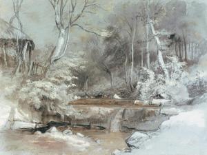 In Cusop Dingle, near Hay-on-Wye, Wales, 1837 by Samuel Palmer