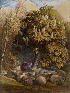 Pastoral with a Horse Chestnut Tree, C.1830-31 (Watercolour and Bodycolour) by Samuel Palmer