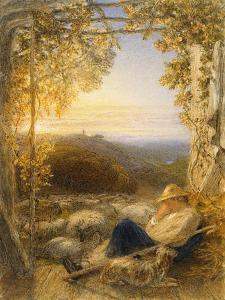 Sleeping Shepherd - Morning, C.1857 by Samuel Palmer