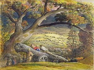 The Timber Wain, C.1833-34 (W/C and Gouache on Paper) by Samuel Palmer