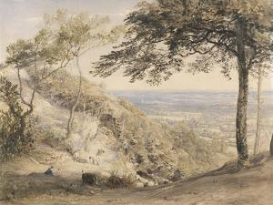 Wilmot's Hill, Kent (W/C, B/C and Chalk on Paper) by Samuel Palmer