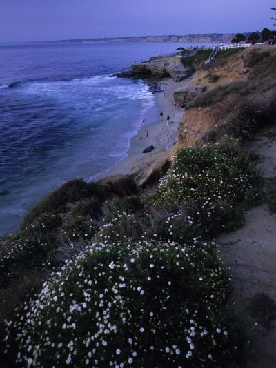 San Diego's Cliff-Lined Pacific Shore at Twilight-Michael Melford-Photographic Print
