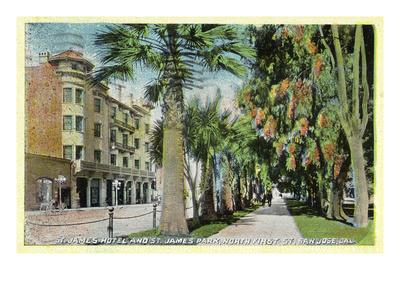 https://imgc.artprintimages.com/img/print/san-jose-california-north-1st-street-view-of-st-james-hotel-and-park_u-l-q1gpa610.jpg?p=0