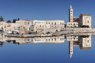 San Nicola Pellegrino Cathedral, Old Town, Trani, Le Murge, Barletta-Andria-Trani District-Markus Lange-Photographic Print