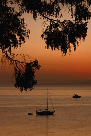 https://imgc.artprintimages.com/img/print/san-pablo-bay-sunrise_u-l-pi1asx0.jpg?p=0
