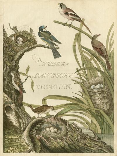 Sanctuary for Birds-Nozeman-Art Print
