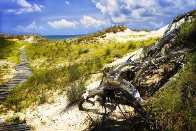 Sand Bay Beach I-Alan Hausenflock-Photographic Print