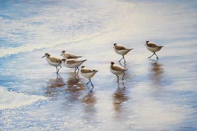 Sand Dancers-Bruce Nawrocke-Art Print