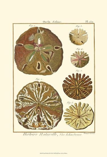 Sand Dollars III-Diderot-Art Print