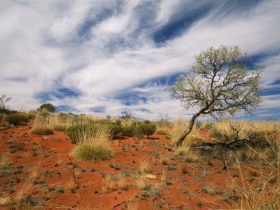 Sand Dune Formations at Uluru National Park-Richard Nowitz-Photographic Print