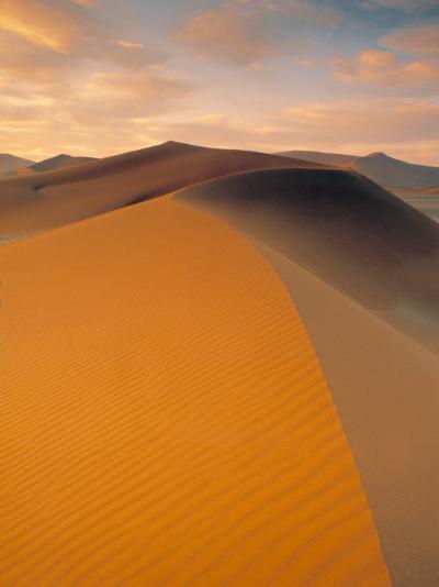 Sand Dune in Desert, Namib Desert, Namibia-Peter Adams-Photographic Print