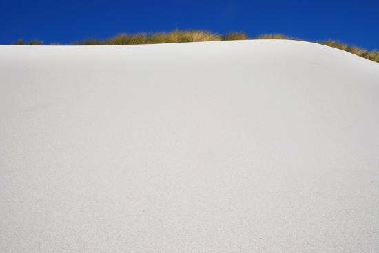 Sand Dune-Design Pics Inc-Photographic Print