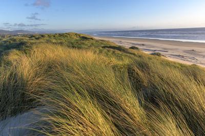 https://imgc.artprintimages.com/img/print/sand-dunes-and-pacific-ocean-in-the-oregon-dunes-nra-oregon_u-l-pyrkuy0.jpg?p=0