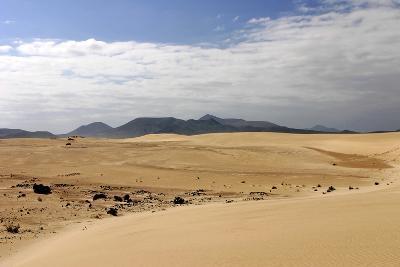 Sand Dunes, Corralejo, Fuerteventura, Canary Islands-Peter Thompson-Photographic Print