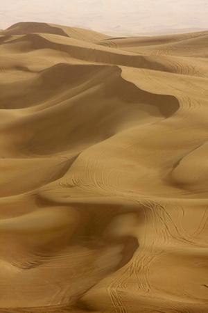 https://imgc.artprintimages.com/img/print/sand-dunes-dubai-united-arab-emirates-middle-east_u-l-png0md0.jpg?p=0