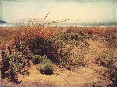 Sand Dunes I-Amy Melious-Premium Giclee Print