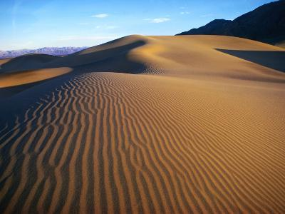 Sand Dunes in Death Valley-Bill Ross-Photographic Print