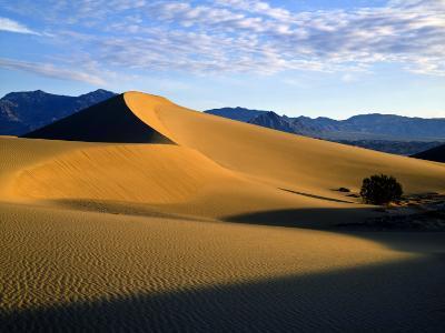 Sand Dunes in Mesquite Flat, Death Valley National Park, California, USA-Bernard Friel-Photographic Print