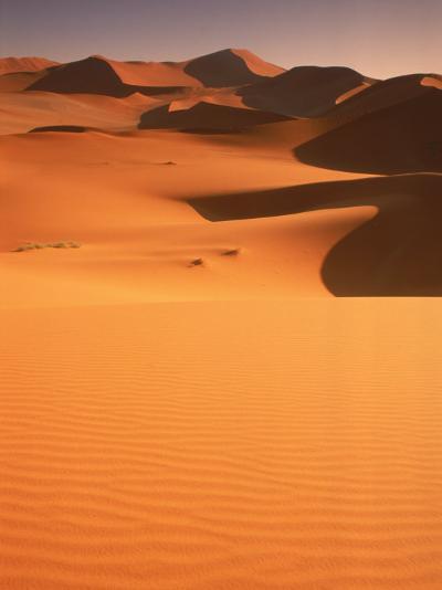 Sand Dunes, Namibia-Peter Adams-Photographic Print