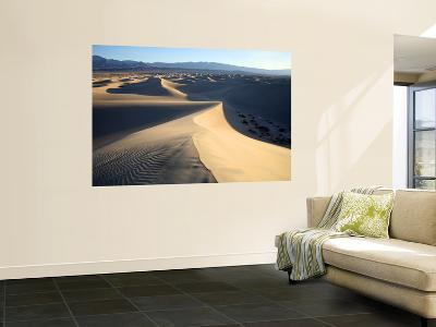 Sand Dunes Near Stovepipe Wells-Feargus Cooney-Wall Mural
