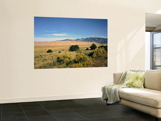 Sand Dunes of Great Sand Dunes National Park and Preserve in the Sangre De Cristo Mountains, CO-Bernard Friel-Wall Mural