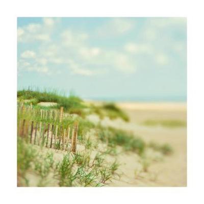 https://imgc.artprintimages.com/img/print/sand-dunes_u-l-q1guc1p0.jpg?p=0