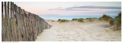 Sand Fence, Early Morning--Art Print