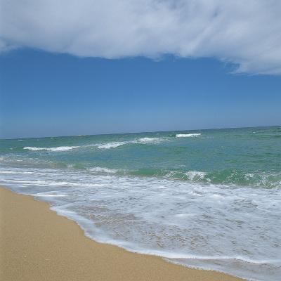 Sand on a Beach--Photographic Print