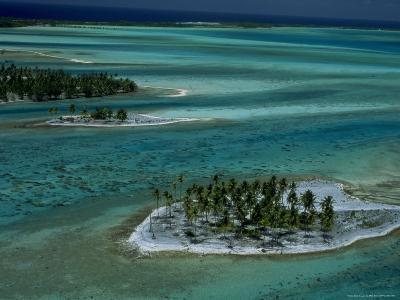 Sandbars with Palm Trees, Bora Bora-Mitch Diamond-Photographic Print