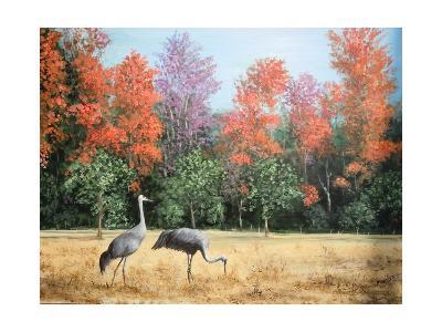 Sandhill Cranes in Florida-Marilyn Dunlap-Photographic Print