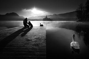 A peaceful morning at the lake by Sandi Bertoncelj