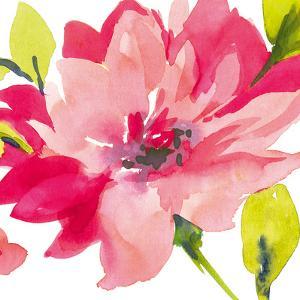 Crimson Flower II by Sandra Jacobs