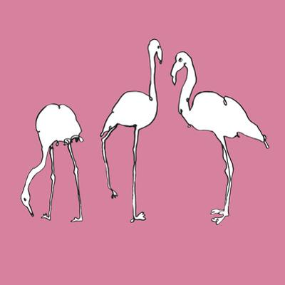 Flamingo Trio by Sandra Jacobs