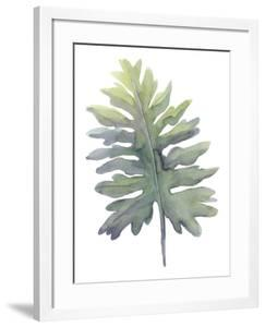 Frond II by Sandra Jacobs