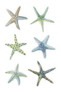 Sea Stars by Sandra Jacobs