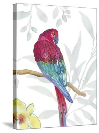 Vibrant Parrot