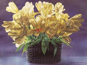 Bumble Bee, 2011 by Sandra Lawrence