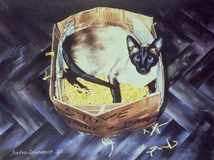 Mustdi 1983 by Sandra Lawrence