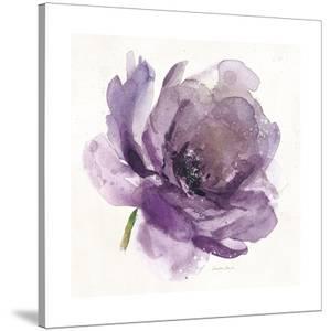Watery Plum Bloom 1 by Sandra Smith