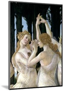 Primavera: Detail of Two of the Three Graces by Sandro Botticelli