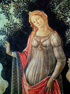 Primavera, Detail of Venus, circa 1478 by Sandro Botticelli