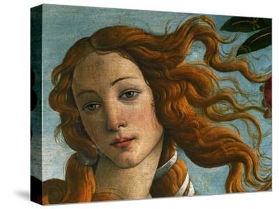 The Birth of Venus (Head of Venus), 1486