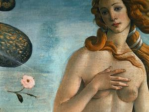 The Birth of Venus (Venus Anadyomene), Detail by Sandro Botticelli