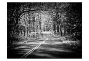 Country Road 1 by Sandro De Carvalho