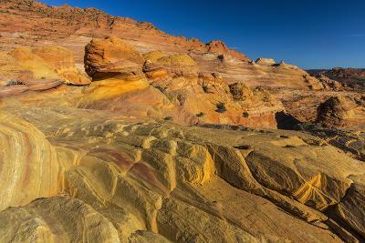 Sandstone Above the Wave, Vermillion Cliffs Wilderness, Arizona-Chuck Haney-Photographic Print